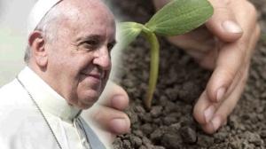 pope-environment